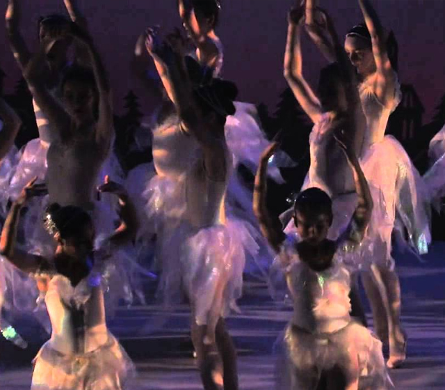 Erwachsenes Ballett klassifiziert Dublin